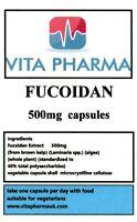 Hoch Stärke Fucoidan 500mg 365 Kappen Gewichtsverlust Entzündung