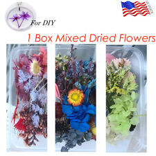 Dried Flower Kit Real Multi-colored Flowers Art Craft Resin Candle Soap Making