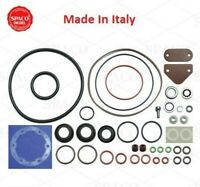 Roosa Master//Stanadyne Diesel Injection Pump seal kit 24370 For DB2 Automotive