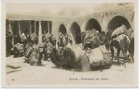 "SYRIA 1920 superb mint b/w RP pc ""Syrie. Chameaux au repos."" - extremely rare"