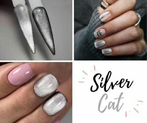 9D Silver Cat Eye Gel Polish Saga Magnetic Nail Polish Silver Polish Nail Art