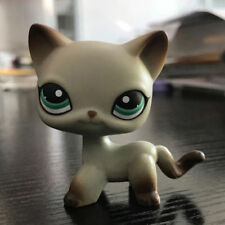 Littlest Pet Shop LPS Short Hair Egyptian Grey Blue Eyes Rare