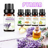 Natural Essential Oils Pure Aromatherapy Therapeutic Grade Anxiety Relief Stress