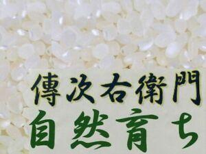 KOSHIHIKARI Organic WHITE Rice Short Grain 1kg DENJIUEMON JGAP  Japan