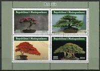 Madagascar Trees Stamps 2019 CTO Bonsais Bonsai Tree Nature 4v M/S I