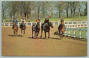 Lexington Kentucky~Horse Race Training~Horse Park~Vintage Postcard