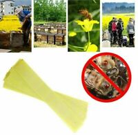 Professional Acaricide Against The Bee Mite Strip Beekeeping Medicine Bee Varroa