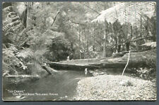 AUSTRALIA,VICTORIA,THE CANOE,YEA RIVER,NEAR TOOLANGI HOUSE,BW,UN,