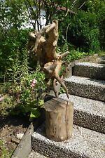 Treibholz/Schwemmholz - Skulptur/Floristik 88 cm hoch /SchaufensterDeko