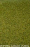 """150,33 € / m² - Heki 1861 - realistic Wildgras """"Waldboden, Grasmatte 45 x 17 cm"""