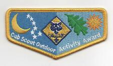 "Cub Scout Outdoor Activity Award Patch, ""Since 1910"" Backing, Mint!"