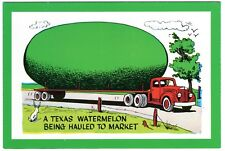 Vintage Exaggeration Postcard- A Texas Watermelon Being Hauled to Market