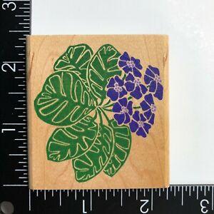 Rubber Stampede African Violet Wood Mounted Rubber Stamp Flower Botanical