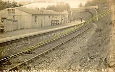 Shaugh Bridge Railway Station Photo. Bickleigh - Yelverton. Plymouth Line. (6)