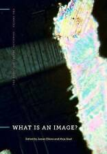 NEW What Is an Image? (The Stone Art Theory Institutes)