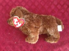 """Seadog"" Ty Beanie Babies Plush American Water Spaniel or Retriever?"