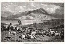 Pastori Bergamaschi sulla Bernina. Veduta Pittoresca. Alpi Retiche. Bergamo.1861