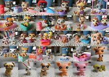 LPS Littlest petshop pet shop chien chat européen colley cat dog rare accessoire