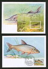 BELARUS-5 MC - FAUNA-FISH - 1997.