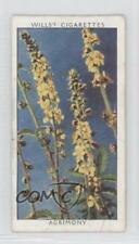 1937 Wills Wild Flowers Series 2 Tobacco Base #14 Agrimony Non-Sports Card 3x6