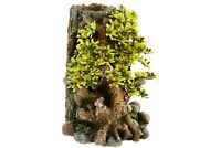 Bonsai with Plants Aquarium Fish tank Decoration 30 Litre Orb Ornament