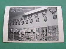 Coats Hardware The store with the Deer Heads Taxidermy RPPC Postcard