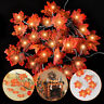 3pcs Thanksgiving Fall Decor Garland String Lights30 ft 60LED Maple Leaves Light