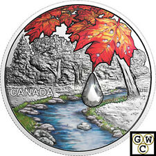 2017Sugar Maple Leaves-Jewel of the Rain' Prf $20 Silver Coin .9999Fine(18213)NT