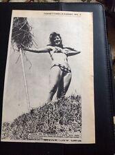 67-3 Ephemera 1974 Picture Birchington Jenny Bedwell Harvest Time