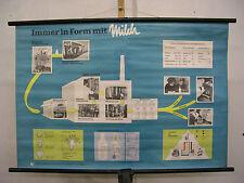 Schulwandkarte Die Milch machts Immer in Form mit macht müde Männer munter 98x66
