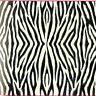 Foglio in Carta di Riso / Zebra /Animale/Cappotto/DFT091