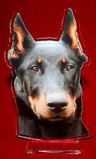 statuette photosculptée 10x15 cm chien beauceron 6 dog hund perro cane