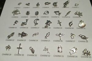 Sterling Silver charm Bracelet Charms Including Jump Rings