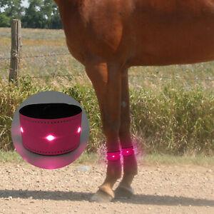 LED Equestrian Supplies Horse Leg Strap Safety Belt Night Riding Equipment