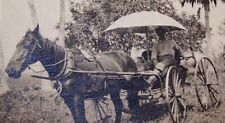 ANTIQUE REAL PHOTOGRAPH POST CARD-RPPC-MAN-HORSE-BUGGY-UMBRELLA-NEVER MAILED