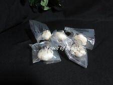 Tupperware New Miniature Mini 5 Garlic Keeper Forget Me Not Magnet Magnets
