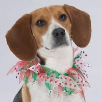 Aria Merry Dots Dog Pet Scrunchy Neck COLLAR Christmas Holiday Red Green  S only