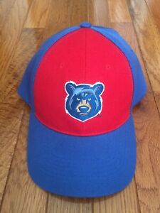 NEW Tennessee Smokies Chicago Cubs AA Minor League Baseball Adjustable Hat