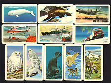 CIGARETTE/TRADE/CARDS.Brooke Bond Tea (Canada).THE ARCTIC.(1973). Full Set of 48