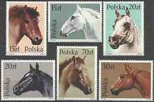 Timbres Chevaux Pologne 2997/3002 * lot 10052