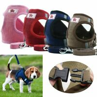 Small Breathable Dog Cat Mesh harness Vest Collar Chest Strap Leash Size XS-XL