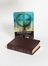 NRSV Bible: Burgundy by Abingdon Press