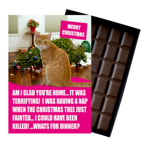 Ginger Cat Christmas Card  Cat Lover Gift Funny 100g Chocolate Stocking Filler