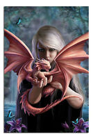 Laminated Anne Stokes Dragonkin Poster Official Licensed 24x36"