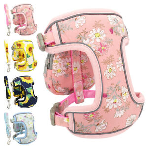 Reflective Padded Dog Harness and  Leash Set Small Dog Floral Puppy Walking Vest