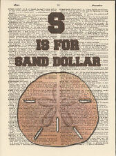 S is for Sand Dollar Alphabet Altered Art Print Upcycled Vintage Dictionary Page