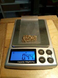 25 Seeds. Danish strain Thyphoon. Grown outdoor in Finland.
