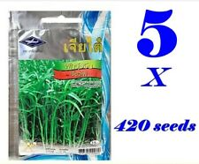 5 x 420 Seeds Morning Glory Garden Easy Planting Thai Vegetable Seeds + Tracking