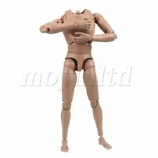 1/6 Scale Action Figure Male Muscular Nude Body Version 4.0 Toys Model 10 x 4""