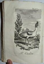 VIAGGI - figur. 1799 - BASSA SASSONIA - SVIZZERA - 2 tavole